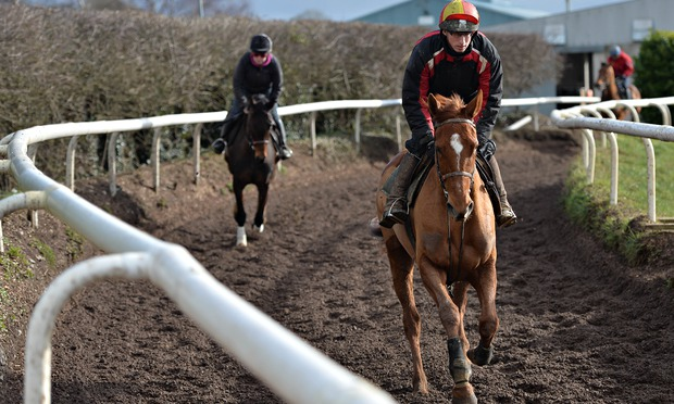 Annie-Power-Willie-Mullins-Stables